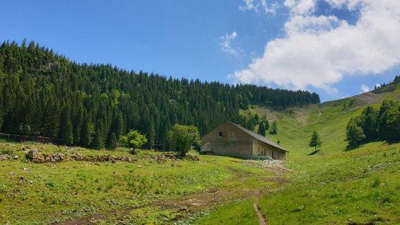 Bergerie du Creux du Croue - Arzier-Le Muids - Vaud - Suisse
