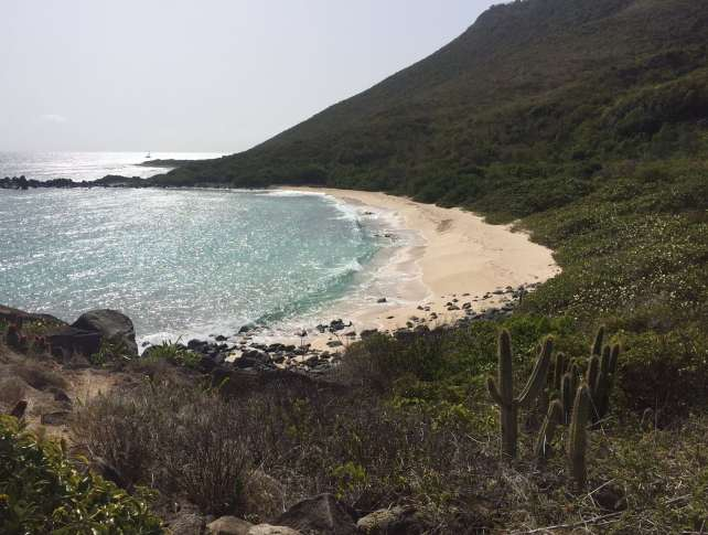 "View of the beach from the trail - ""Hiking in St. Martin"" - Two Traveling Texans"