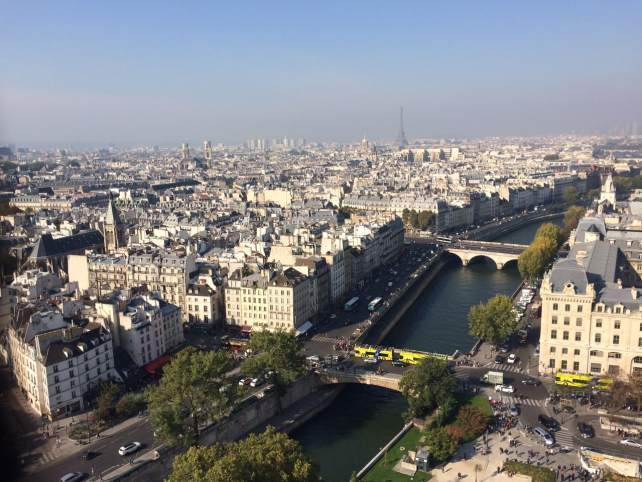 View of the Seine from the top of Notre Dame