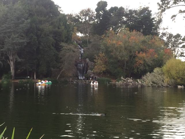 """The boats in Stow Lake in Golden Gate Park - """"Golden Gate Park - More than Your Average Greenspace"""" - Two Traveling Texans"""