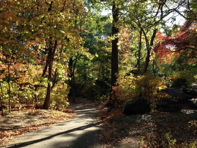 "The North Woods looks more like a wilderness hike than a park in the middle of NYC. - ""The Hidden Gems in Northern End of Central Park"" - Two Traveling Texans"