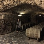Learning About Wine the Rioja Way