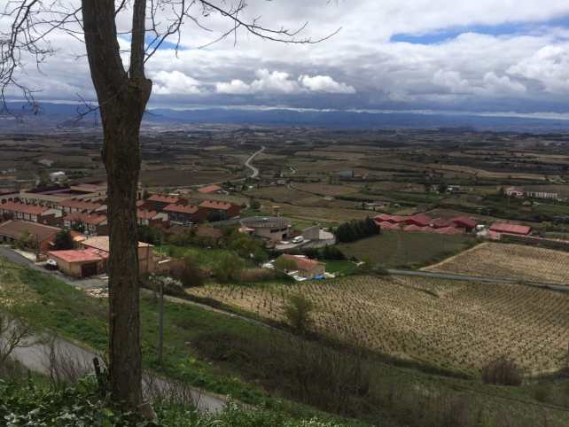 There is a nice view of the Rioja region from just outside the city walls of Laguardia.