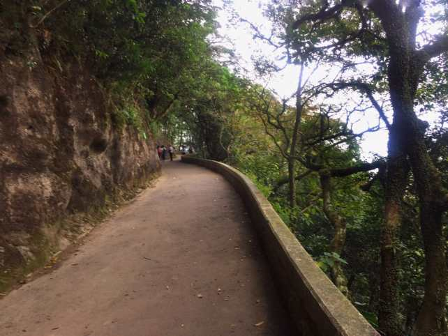 """They did such a nice job with the paths on Victoria Peak.- """"Don't Miss Victoria Peak When Visiting Hong Kong"""" - Two Traveling Texans"""