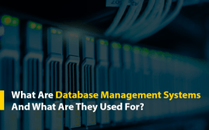 What Are Database Management Systems And What Are They Used…