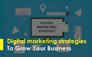 Digital marketing strategies To Grow Your Business