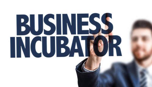 Drawbacks of Business Incubators