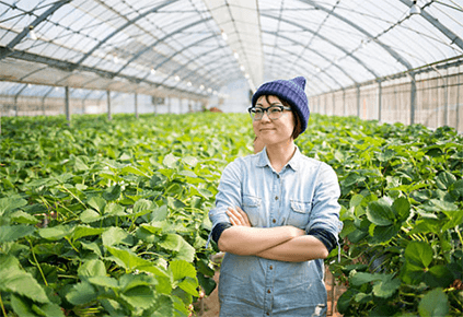 How Agriculture Promotes Food in Sustainability Singapore