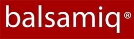 Balsamiq wireframing software