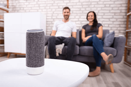 Smart voice controller devices for Smart Homes