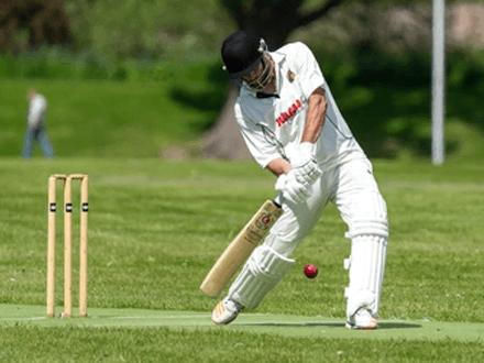 Cricket is as popular in India bestsport
