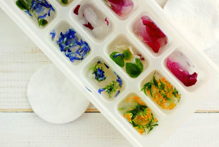 Herbal ice cubes summer refreshing | Brilliant Ice Cube Tray Hacks You Can Do At Home