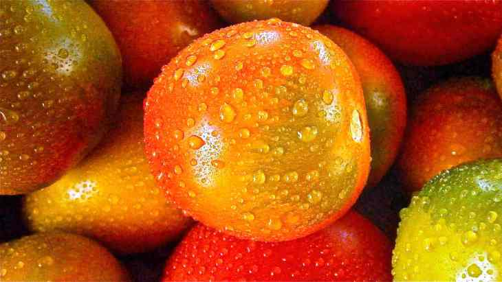 Orange round fruit | Fruits and Veggies That Can Keep You Hydrated