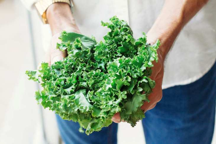 Holding kale | High Alkaline Foods To Add To Your Diet