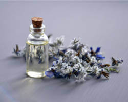 flavor-and-fragrances