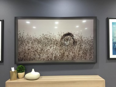Samsung-the-frame-cedia-utah-04