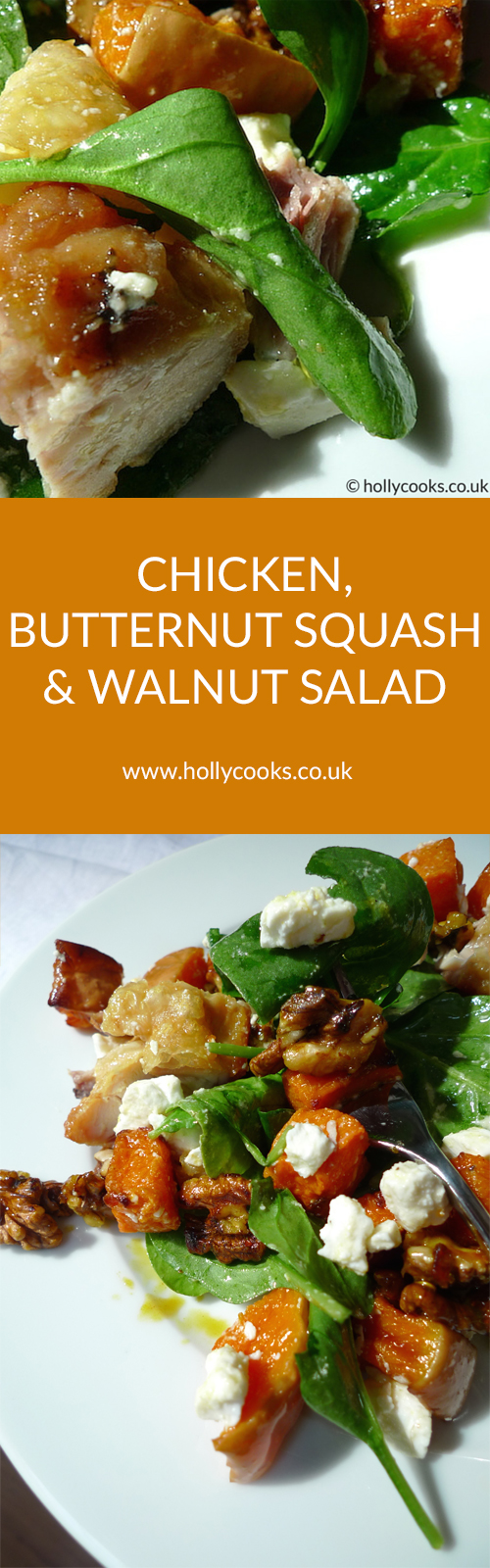 chicken, butternut squash and walnut salad
