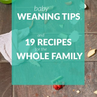 Baby weaning tips and 19 recipes for the whole family