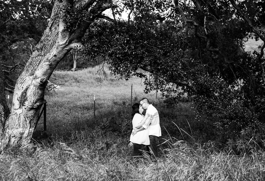 Mackenzie_Ryan_Sunol_CA_Engagement_Pictures-30