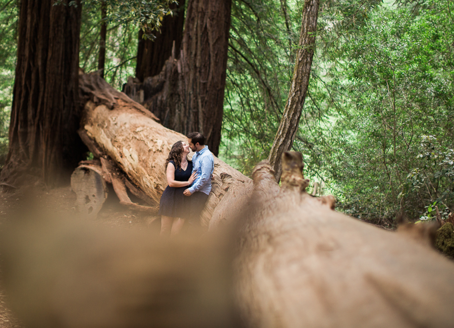 Big_Basin_Engagement_Pictures-17