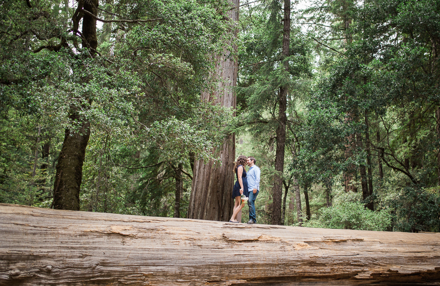 Big_Basin_Engagement_Pictures-21