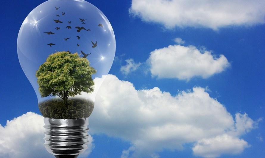 أنواع الطاقة المتجددة : الحيوية – الرياح – الشمسية – المياه