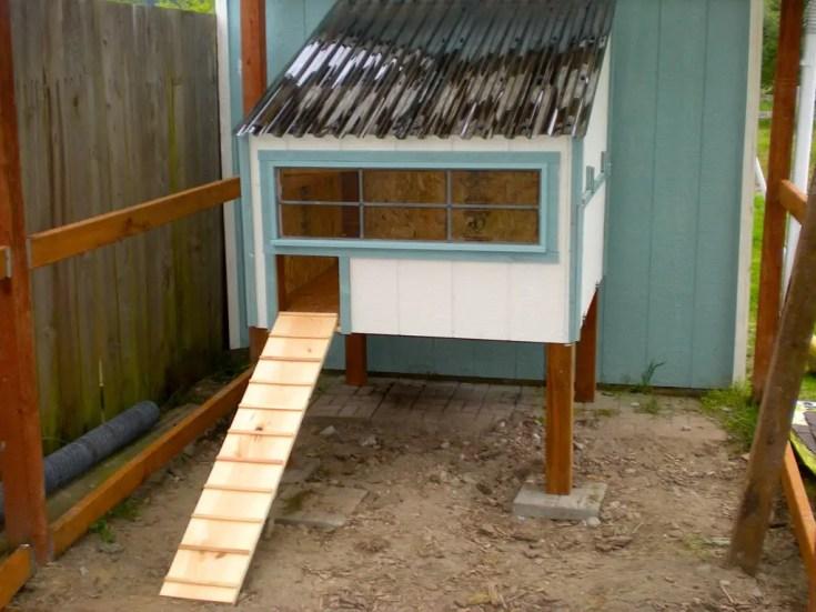 clean your chicken coop