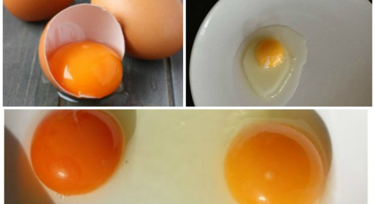 How to Recognize a Good Egg Yolk