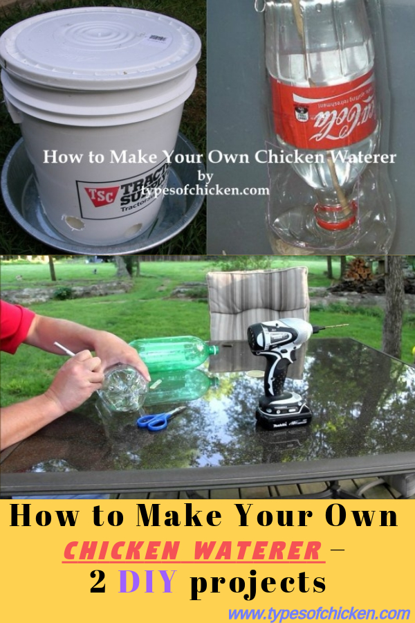 How To Make Your Own Chicken Waterer 2 Diy Projects