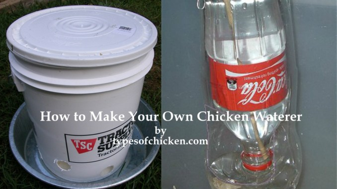 How to Make Your Own Chicken Waterer