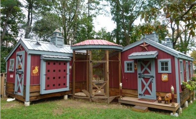 urban-chicken-coop-2