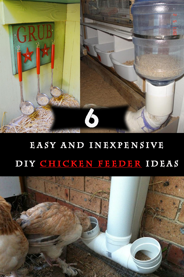 The best kind of chicken feeder would depend on the number of chooks you are raising, the size and design of the coop, the materials readily available to you and the problems you specifically encounter concerning their food.