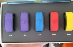 An open box with five Walt Disney World Magicbands colored purple, blue, red and yellow.