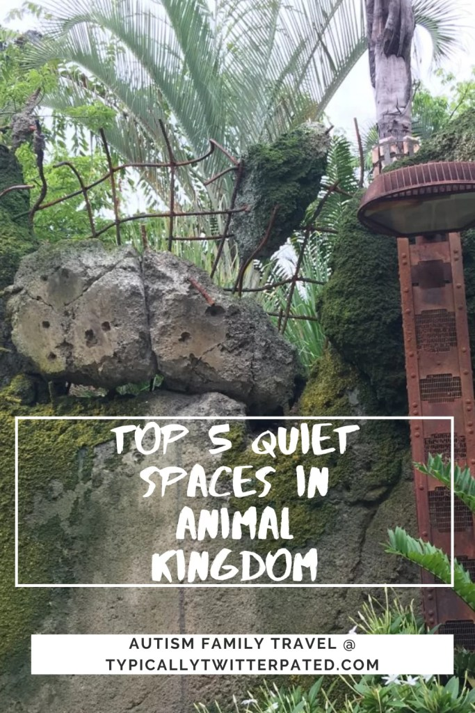 top 5 quiet spaces in Animal Kingdom