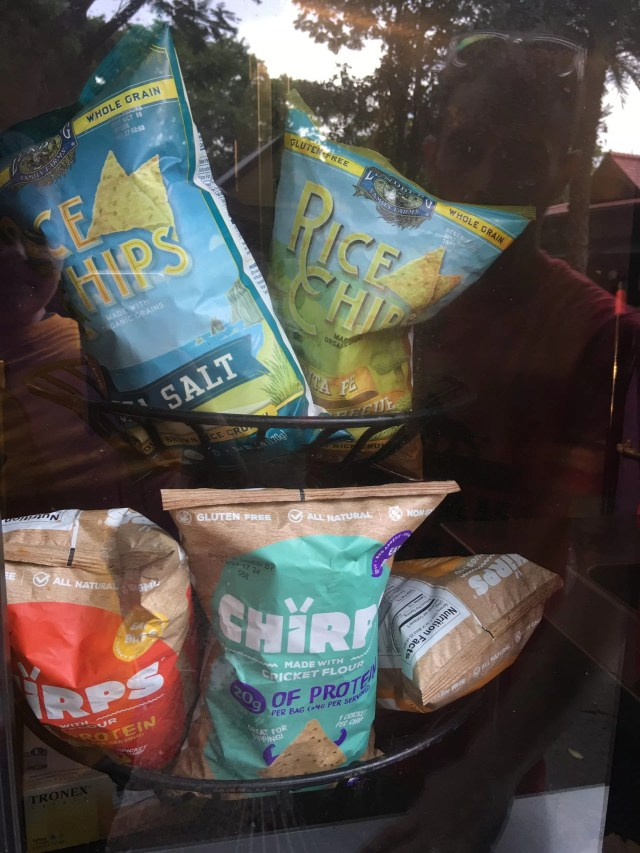 Cricket chips in the window at the allergy kiosk in disney's animal kingdom