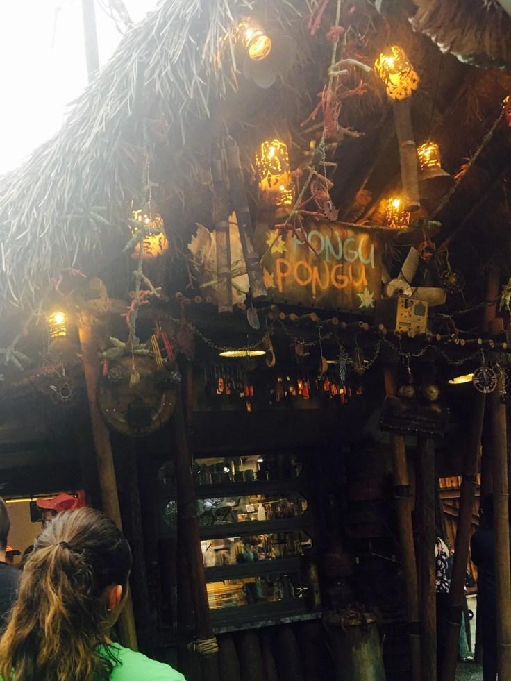 exterior straw hut pongu pongu