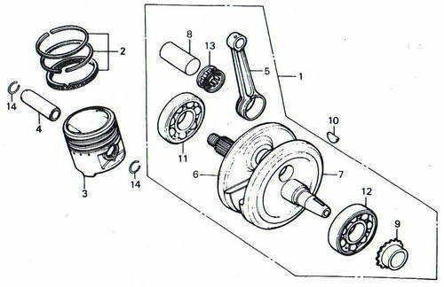 TLR200 Crank & Piston Parts
