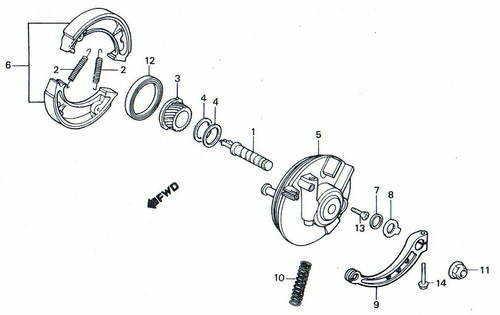 TLR200 Front Brake Parts