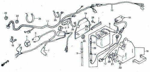 TLR200 Wiring Loom