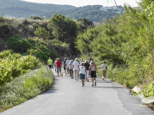 10-Healthy walking 2013 - 28