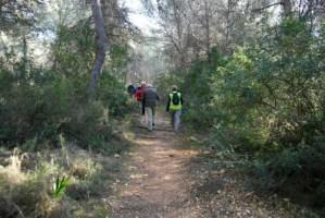 Healthy Walking @ LLIBER: Circuit of Llíber hill