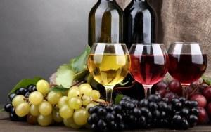 Wine Tasting Group: Day trip to Bodegas Castaño in Yecla @ Bodegas Castaño, Yecla