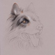 uart tip drawing fur with colored