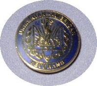 UAV lapel pin