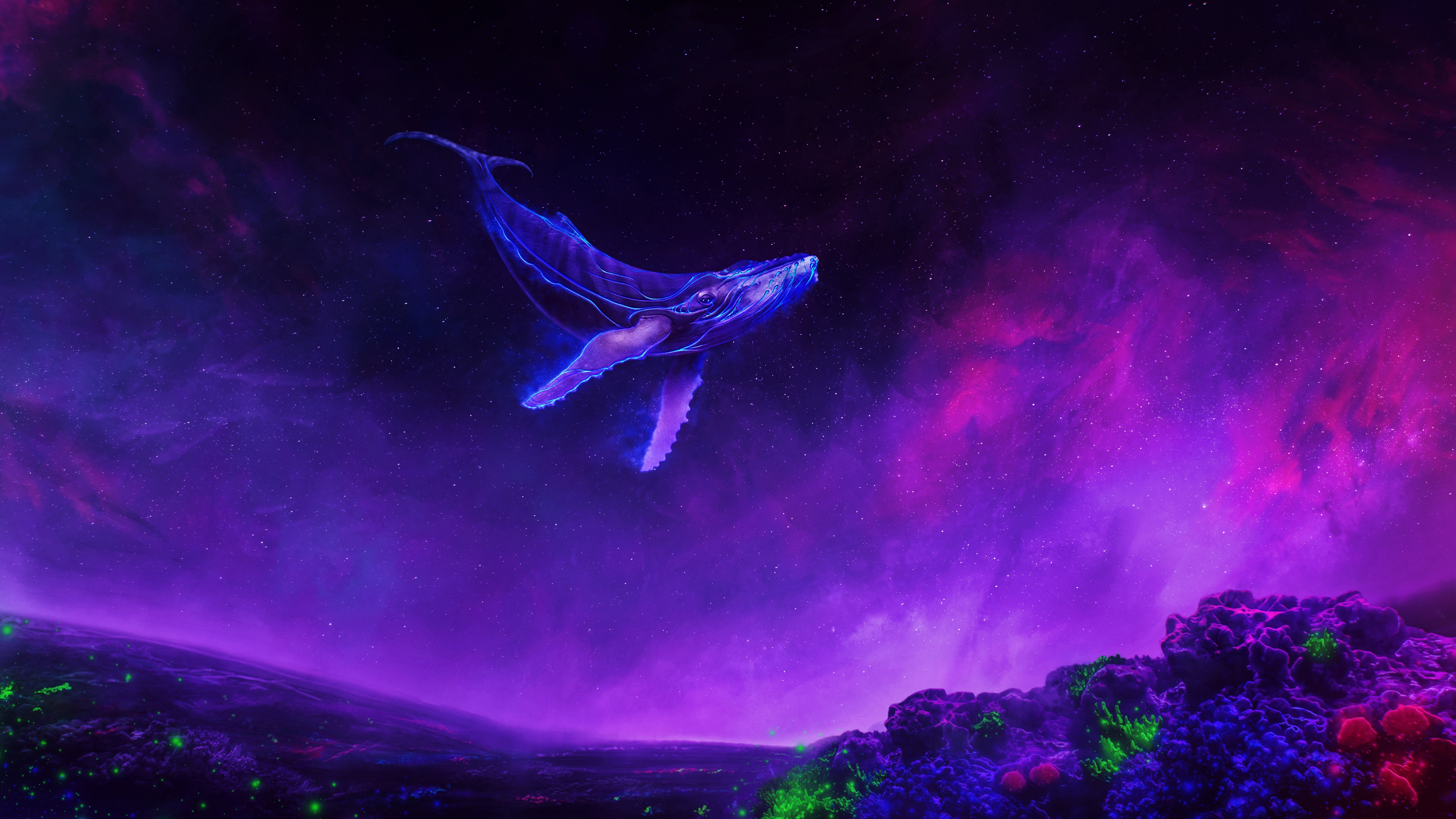Nature Images Hd 3d Wallpapers Wallpaper Of Purple Sky Whale Animal Smoke Background
