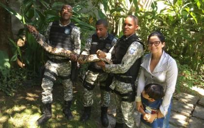 Agentes resgataram cobra em quintal (Foto: Divulgação)