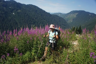 Hiking up the Cyrtina Spur, once a logging road, now a trail