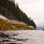 Spencer paddling Jervis Inlet in Princess Royal Reach (Photo: S. Higgs)
