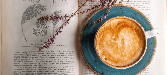 6 Poetry Bites to Feed Your Soul on Dark, Gloomy Days