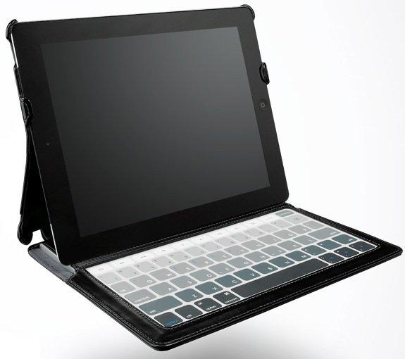 SKINNY iPad 2 case